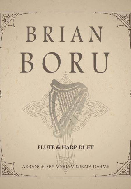 Partition Brian Boru